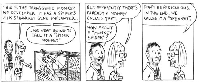 """This is the transgenic monkey we developed. It has a spider's silk spinneret gene implanted ... we were going to call it a """"spider monkey"""" but apparently there's already a monkey called that. How about a """"monkey spider""""? Don't be ridiculous. In the end, we called it a """"spunkey""""."""